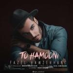 Fazel Hamzekhani – To Hamooni -