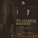 Misagh Johari – To Hamini