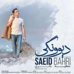 Saeid Bahri – Divoonegi