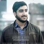 Pourya Salehi – Ghalbe Mane