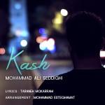 Mohammad Ali Seddighi – Kash
