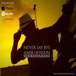 دانلود آهنگ امیرحسین شیخ حسنی هیچ وقت نگو خداحافظ