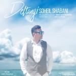 Soheil Shabani – Deltangi