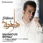 دانلود آهنگ محمود دوولی به نام دلخوشی