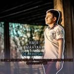 Amir Mahyar – Delkhoshi