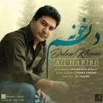 Ali Habibi – Delam Khoone