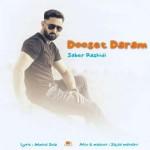 Saber Rashidi – Dooset Daram