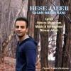 Sasan Babakhani – Hese Jaleb -