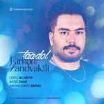 Farhad Zandvakili – Taadol -