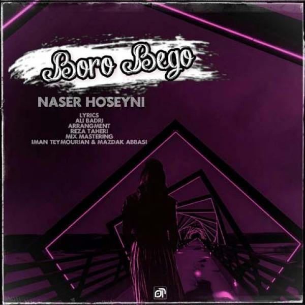 دانلود آهنگ ناصر حسینی به نام برو دیگه
