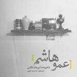 Peyman Talebi – Amoo Hashem -