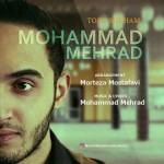 Mohammad Mehrad – Toro Mikham