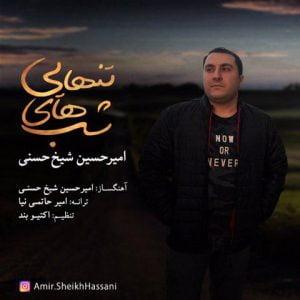 امیرحسین شیخ حسنی