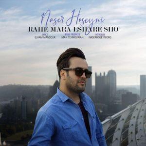 ناصر حسینی