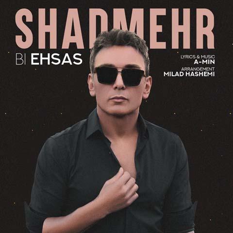 Shadmehr Aghili - Bi Ehsas - دانلود آهنگ جدید شادمهر عقیلی به نام بی احساس