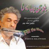 دانلود موزیک ویدیو پرویز نجف پور پر کن پیاله را