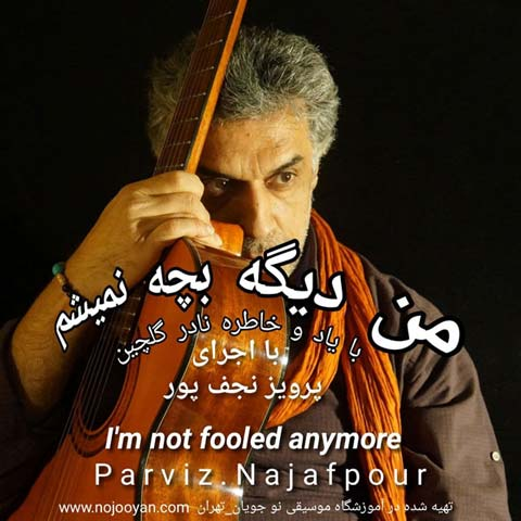 دانلود موزیک ویدیو پرویز نجف پور من دیگه بچه نمیشم
